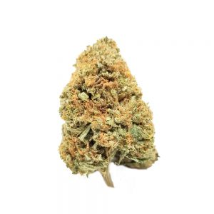 Jedi Kush For Sale