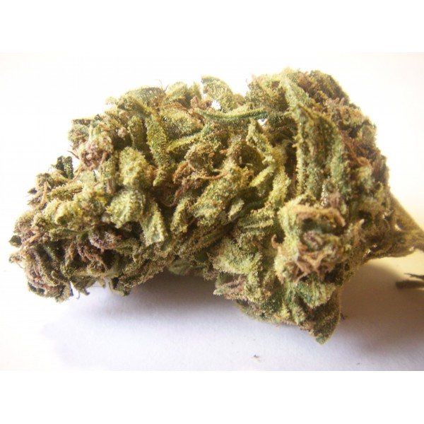 Buy Jack Herer Medical Marijuana Strain