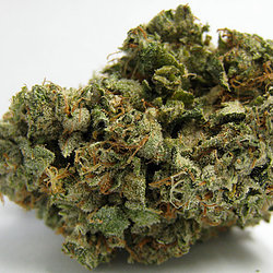 Buy Liberty Haze