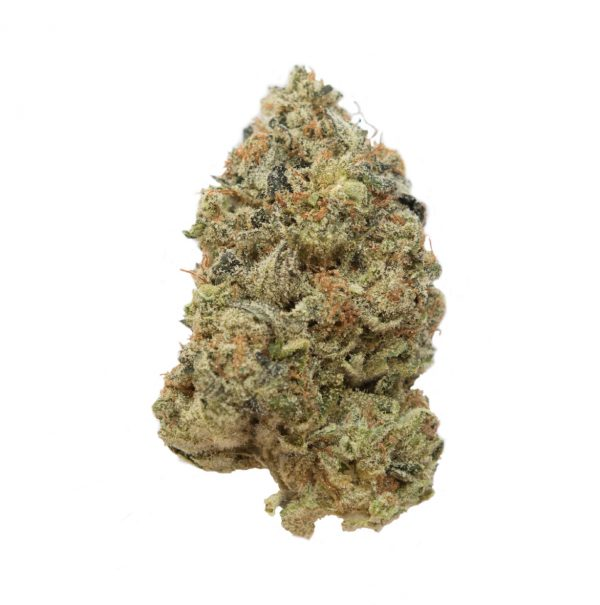 G-13 Indica For Sale