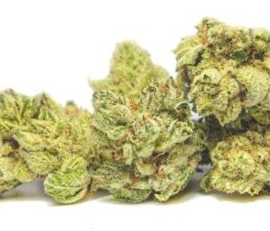 Skunk Korean Strain for sale