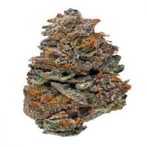 Girl Scout Cookies Strain For Sale