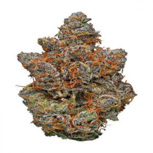 Gelato strains for sale